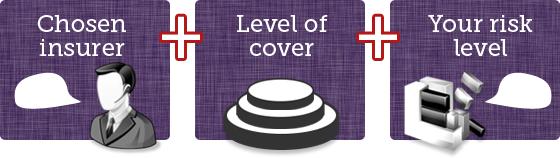 Chosen insurer, plus level of cover, plus your risk level